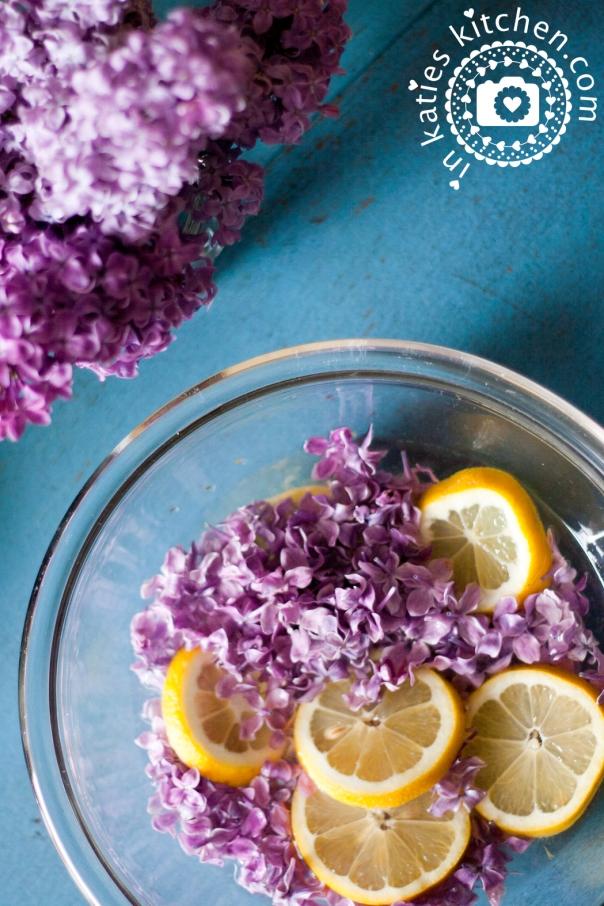 Fliederblueten_Zitrone